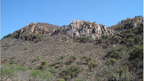 View of vein outcropping at Ermitaño project